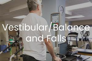 Vestibular Balance and Fall